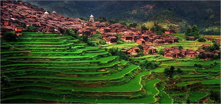 Housing built around the terraced rice fields in Xijiang Qianhu Miao Village, China.